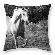 All Charm Throw Pillow