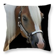 All Cleaned Up Throw Pillow