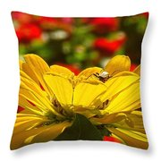 All Done Here Throw Pillow