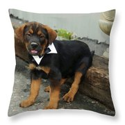 All Dressed Up Nowhere To Go Throw Pillow by Kenny Francis