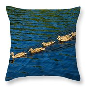 All Ducks Lined Up Throw Pillow