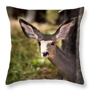 All Ears - Mule Deer Fawn - Casper Mountain - Casper Wyoming Throw Pillow