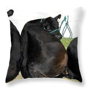 All Eyes Front Throw Pillow