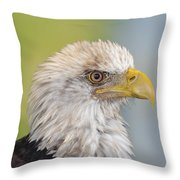 All Feathers And Additude Throw Pillow