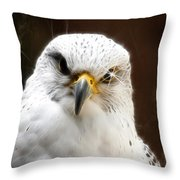 All Fired Up Throw Pillow