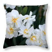 All In White Throw Pillow