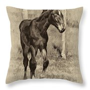 All Legs Sepia Throw Pillow