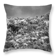 All Out Gallop Throw Pillow