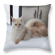 All Paws On Deck Throw Pillow