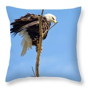 All Puffed Up Throw Pillow