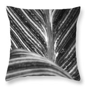 All Roads Lead...bw Throw Pillow