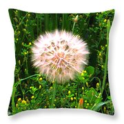 All Stages Represented Throw Pillow