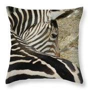 All Stripes Zebra 2 Throw Pillow