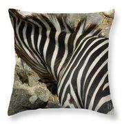 All Stripes Zebra 3 Throw Pillow