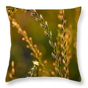 All That Glitters Is Gold Throw Pillow