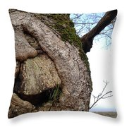 All That I Held In Time Throw Pillow