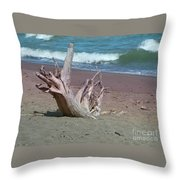 All That Is Left Throw Pillow