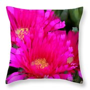 All The Flower Petals In This World 4 Throw Pillow
