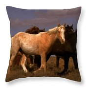 All The Pretty Horses  Throw Pillow