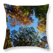 All The Trees Of The Forest Throw Pillow