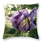 All Things Purple Throw Pillow