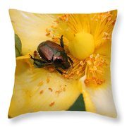 All You Can Eat... Throw Pillow