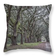 Allee Of Oak Tree's Throw Pillow