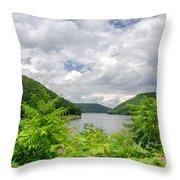 Allegheny Reservoir Throw Pillow
