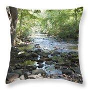 Allen Creek Throw Pillow