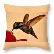 Allen Hummingbird In Flight At Feeder Throw Pillow