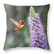 Allen Hummingbird On Flower Throw Pillow