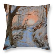 Allen Kingwell Liquin Study Throw Pillow