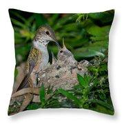 Allens Hummingbird Feeds Young Throw Pillow