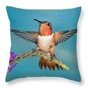 Allens Hummingbird Male Throw Pillow