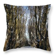Alley In The Snow Throw Pillow