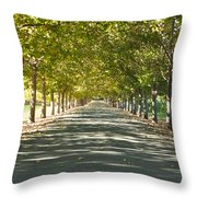 Alley Of Trees On A Summer Day Throw Pillow