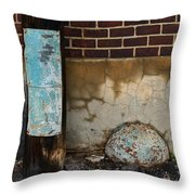Alley Study Guard Img 5561 Throw Pillow