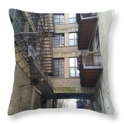 Alley Valley 8 Throw Pillow
