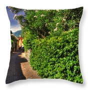 Alley With Green Plants Throw Pillow