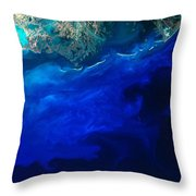 Allgal Bloom Of A Coastline Throw Pillow