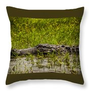 Alligator Amoungst Us Throw Pillow