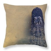 Alligator And Fishes Throw Pillow