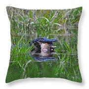 Alligator Appetite Throw Pillow