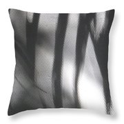 Alligator Creek Sunrise Shadows Throw Pillow