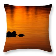 Alligator Dusk Throw Pillow