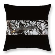 Alligator Eye Throw Pillow