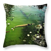 Alligator Gar Throw Pillow