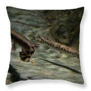 Alligator Gars Throw Pillow