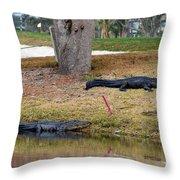 Alligator Hazard Throw Pillow