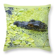 Alligator In Duckweed Looking At Me Throw Pillow